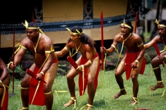 Male dancers, PalauPhotograph property of the Palau Visitors Authority